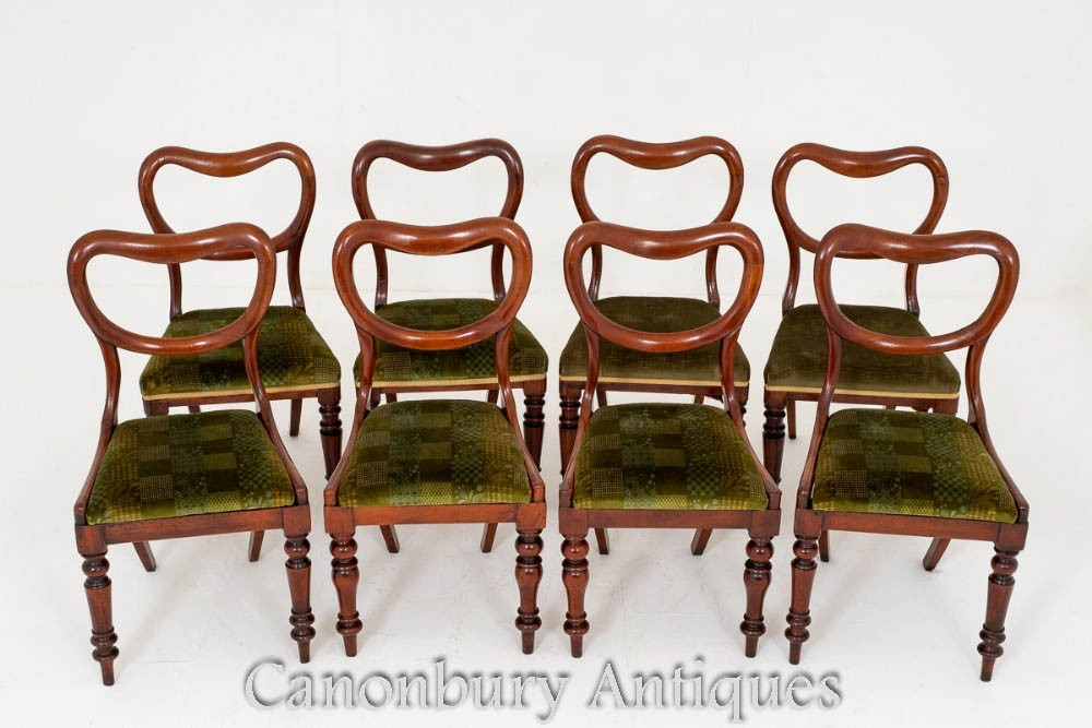 Harlequin Set Victorian Dining Chairs - Mahogany 1850