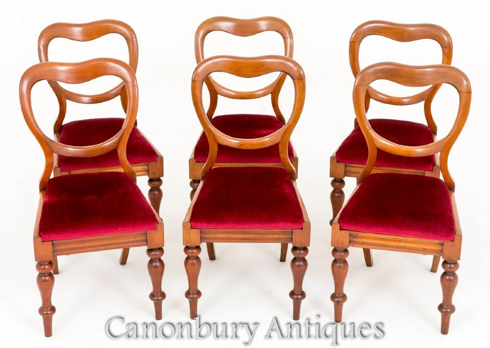 Set Victorian Balloon Back Dining Chairs 1880